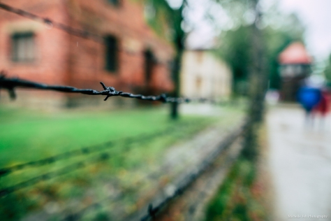 auschwitz_birkenau_michellejobphotography-46