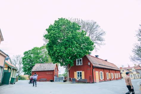 Sigtuna_KroniclesofKandK_MichelleJobPhotography-5