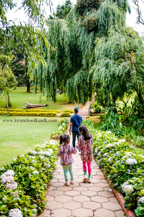 K&K_Ooty_MichelleJobPhotography_LR-253