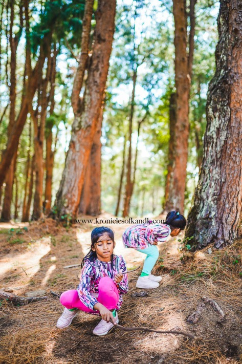K&K_Ooty_MichelleJobPhotography_LR-83